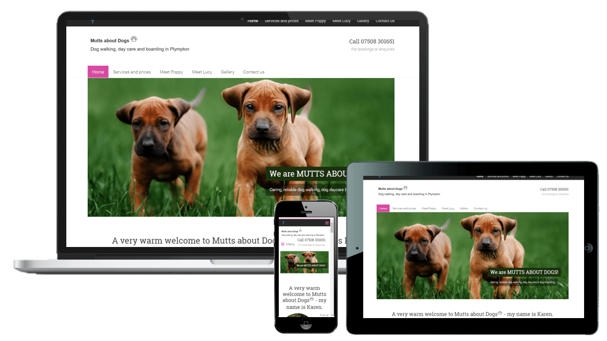 website design in plymouth web design plymouth mutts about dogs website