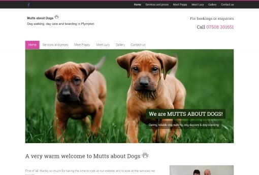 Recent Work Mutts about Dogs Website