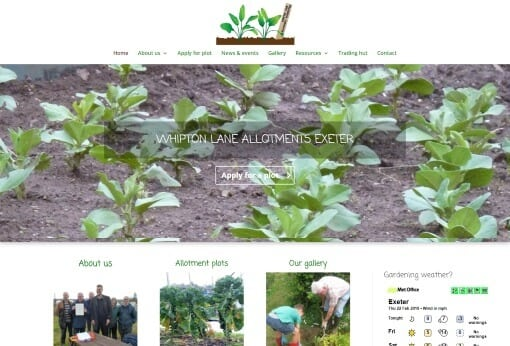 Recent Work WLAA Website